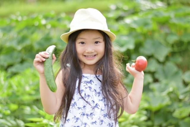 野菜嫌いの子どもも喜ぶ!家庭菜園のおすすめグッズ。カワイイ見た目で野菜嫌いが克服できるかも!?