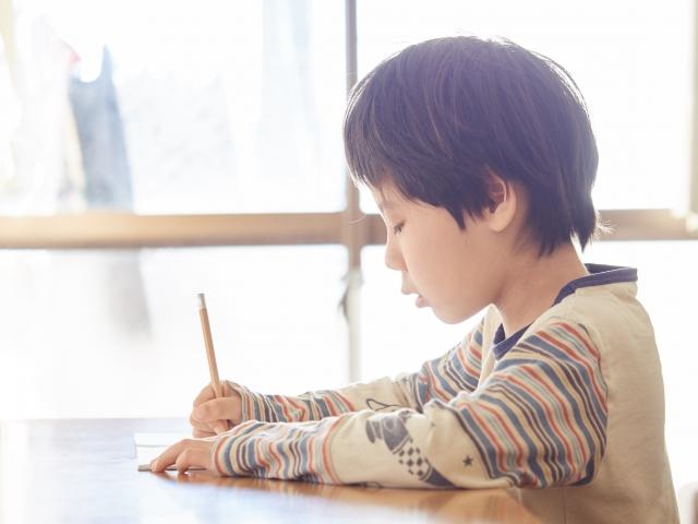 第2弾:Z会編-小学生:家庭学習にはどれがいい?調べてみました!