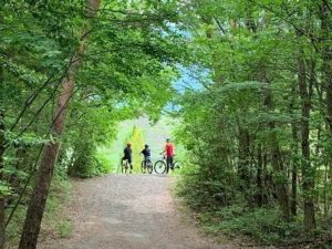 【関東周辺おすすめキャンプ場】子どもと楽しめるキャンプ!充実設備でママにもやさしい!