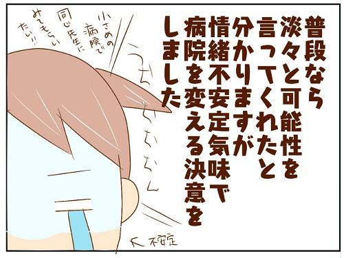 【3】早期妊娠検査からの不安 妊活4年目からの妊娠 チョビの育児日記