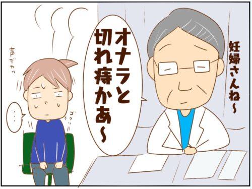 【9】妊婦あるある?制御不能のオナラ…さらに痔まで!妊活4年目からの妊娠 チョビの育児日記