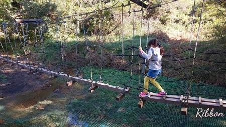 子供も大満足の南知多おすすめスポット!グリーンバレイで満喫遊び&おいしいランチも!|Ribbonの育児ブログ
