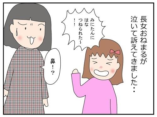 根は根元から…?!2歳妹が姉の鼻をつねった理由がセンスある(笑)|かわいかあこの育児漫画