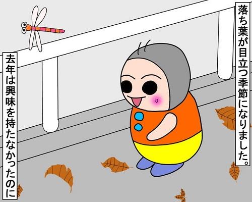 落ち葉を踏む季節になりました。|みーぱぱ子育て漫画