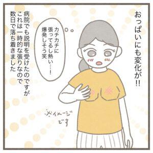 【5】生後4ヶ月、母乳育児やめました。~泣いたら授乳と3時間ごとのミルク~|みゅこの育児絵日記