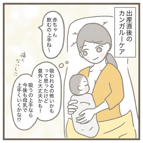 【2】生後4ヶ月、母乳育児やめました。~混合育児予定だった妊娠中~ みゅこの育児絵日記