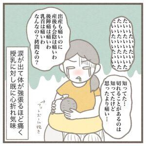 【3】生後4ヶ月、母乳育児やめました。~出産翌日に乳首が切れた~|みゅこの育児絵日記