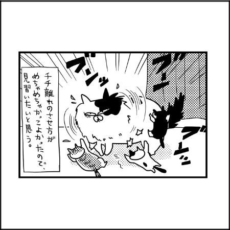 かっこええ~!卒乳方法のお手本はまさかの猫|ぽこたろー育児漫画