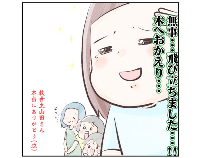 【セミファイナル#2】神降臨!セミよ、木へお帰り... ようみんの育児絵日記